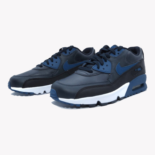 Tenis | Nike Air Max 90 LTR (GS)